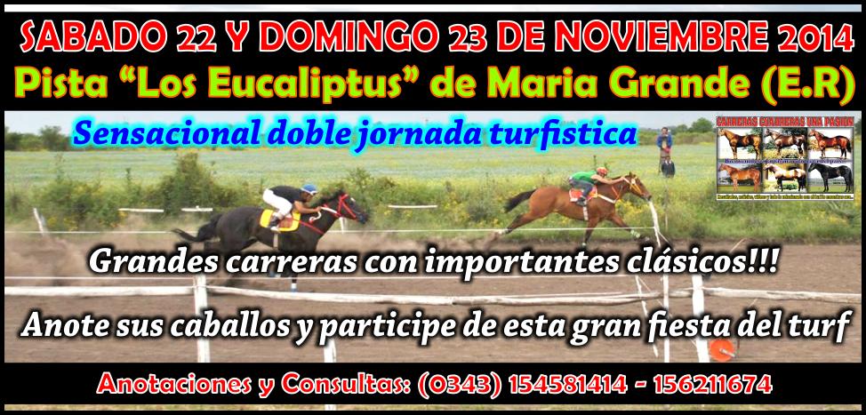 MARIA GRANDE - REUNION 22 Y 23.11.14