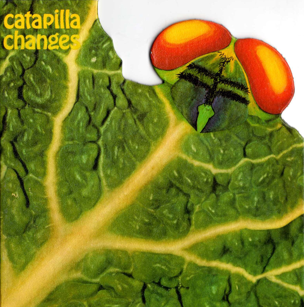 Catapilla Changes