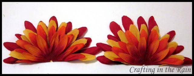 half+flower.JPG