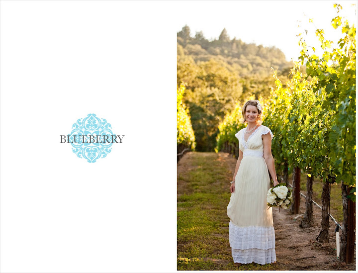 Napa vineyard beautiful bride wedding photographer