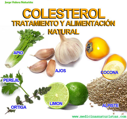 Toda la verdad sobre el colesterol puro y sano - Alimentos que provocan colesterol ...