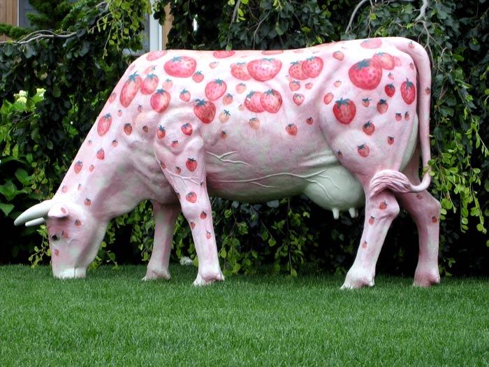 Cute Cows New Photos 2011
