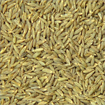 Glossary cumin seeds for Soil meaning in hindi