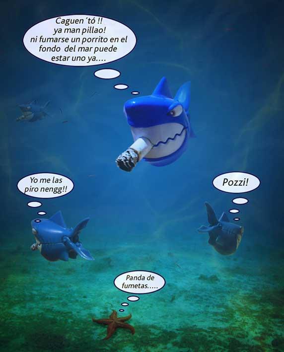 vida de tiburones: