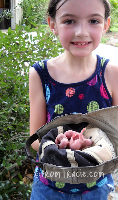 Katarina holding a hat full of baby gray squirrels