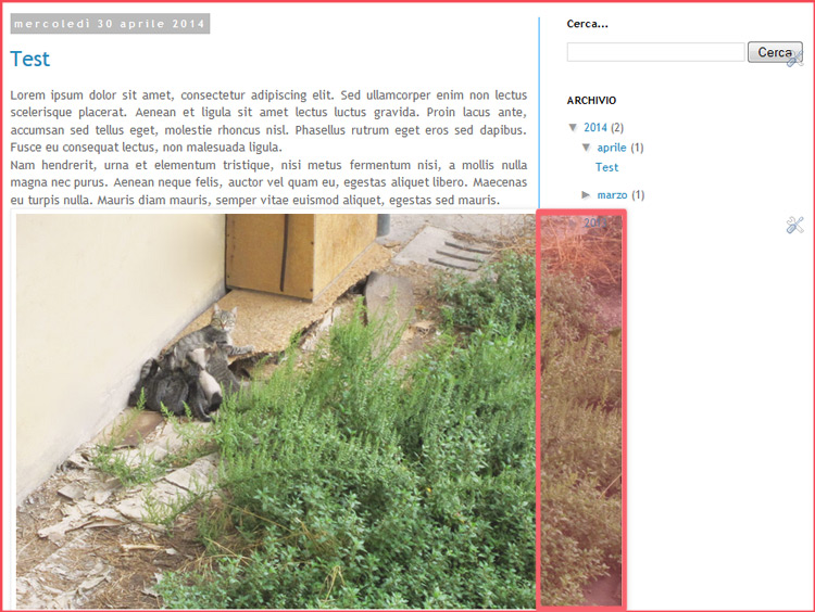 How to preset the width of your Post and Sidebar Images
