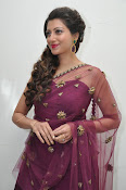Hamsa Nandini at Bengal tiger audio-thumbnail-10