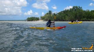 guadeloupe, kayak, guadeloupe kayak, mangrove, lagon