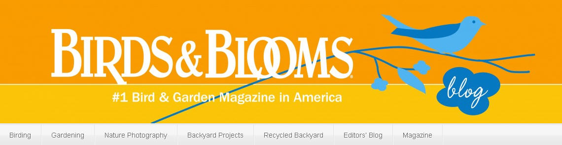 BirdsandBloomsBlog.com   Birds U0026 Blooms Is A Very Popular Bi Monthly  Magazine About Gardening And Backyard Birding. A Few Years Ago, They  Started A Blog And ...