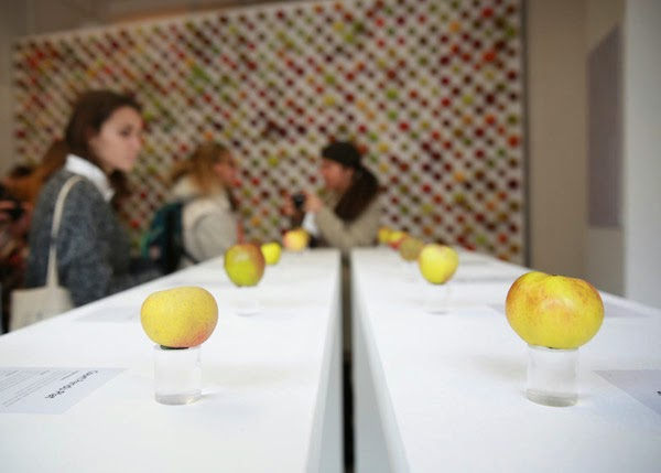 An Apple Store That Is Filled With 1000 Real Apples