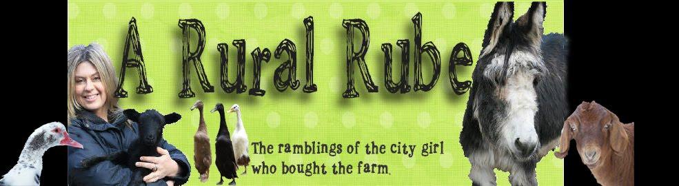 A Rural Rube