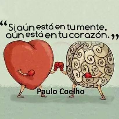Imagenes Con Frases Cortas De Amor