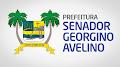 Prefeitura Municipal de Senador Georgino Avelino