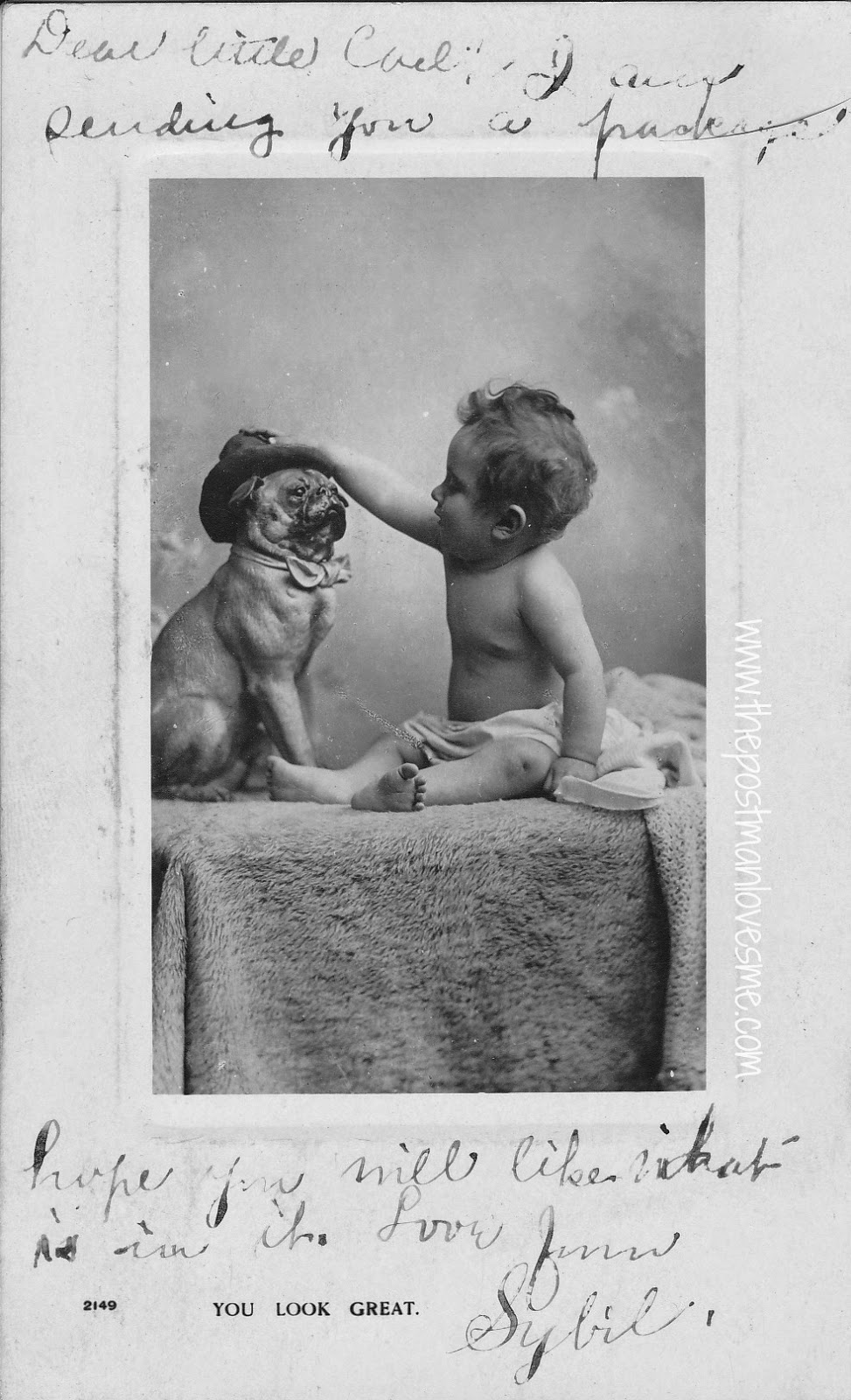 Pug in Top Hat with Baby Vintage Postcard, 9-30-1907 #postcards #vintagepostcard