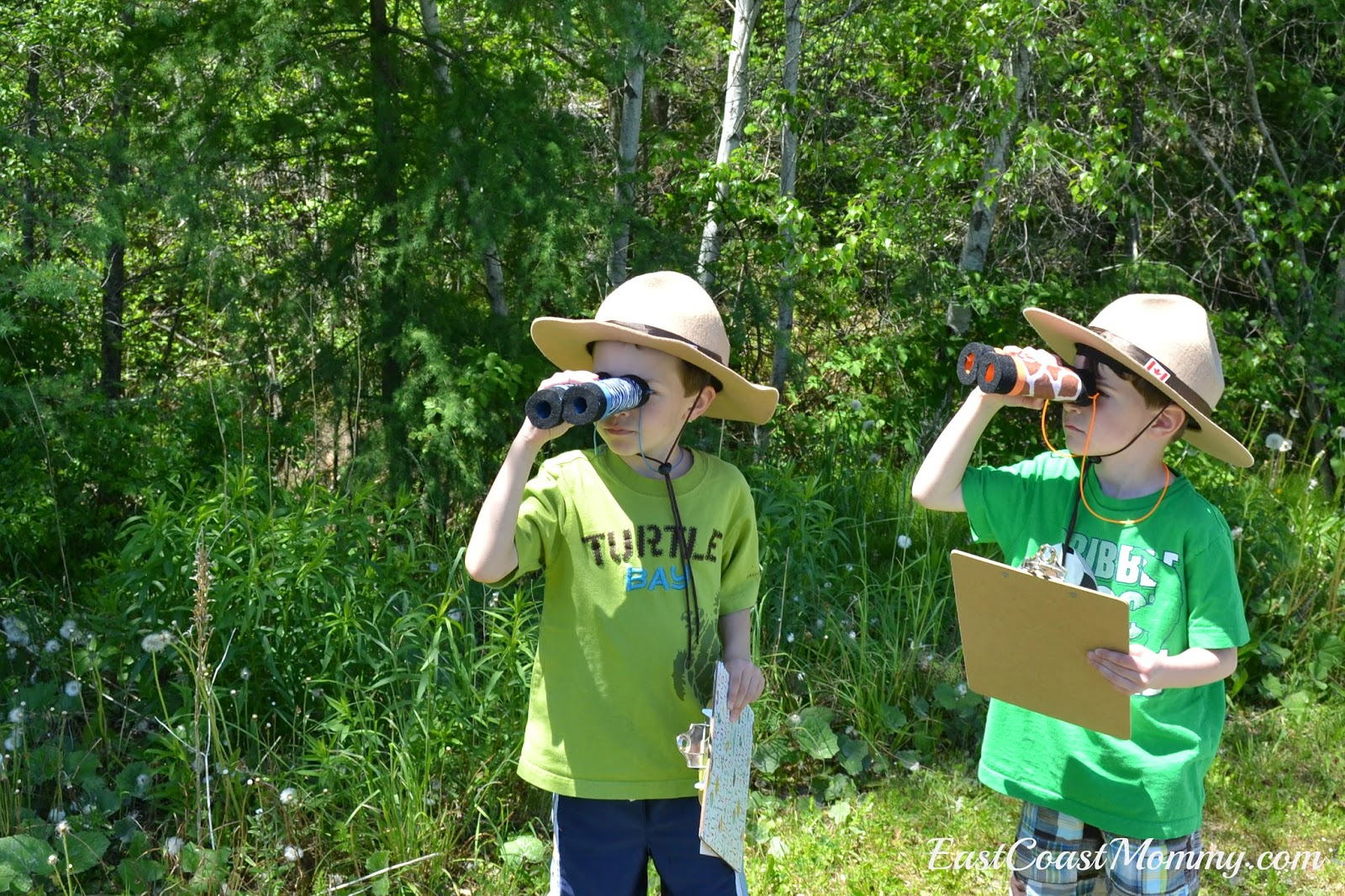 is to plan a backyard safari for your little ones