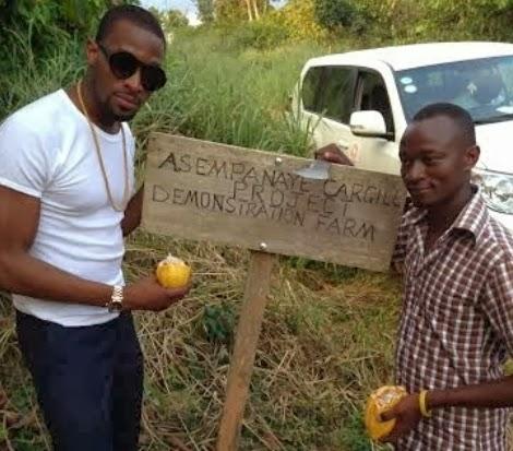 dbanj agriculture