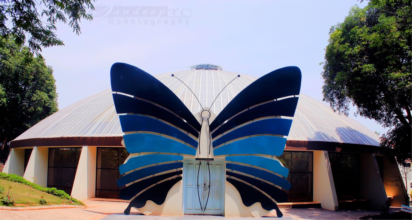 Butterfly Park entrance