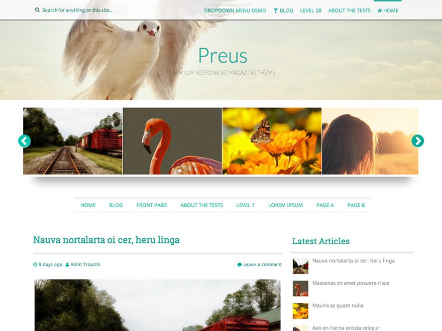 Preus Free WordPress theme 2014