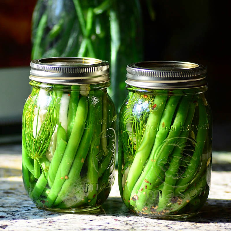 Savoring Time in the Kitchen: Refrigerator Dill Pickles