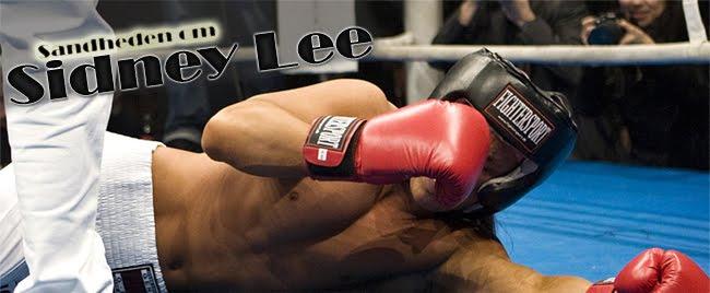 Sandheden om Sidney Lee