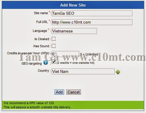 add new site traffic Hitlink