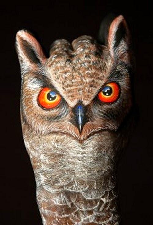12-Owl-Guido-Daniele-Artist-Hand-Painting-Italian