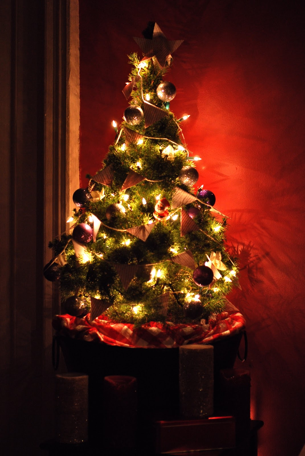 Decorated christmas trees with colored lights