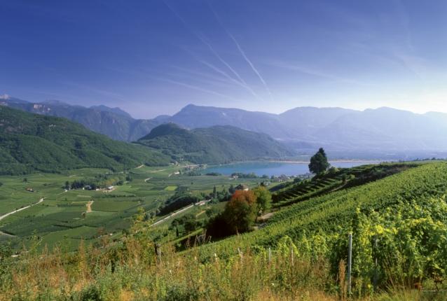 Kalterer See in Südtirol