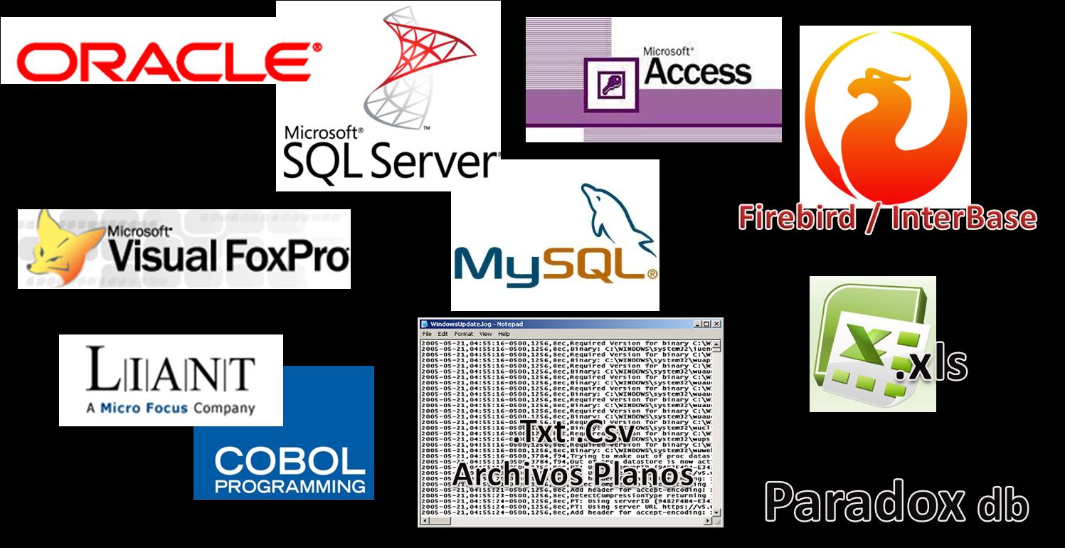 ejemplos de tipos de datos: