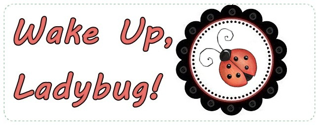 Wake Up Ladybug!