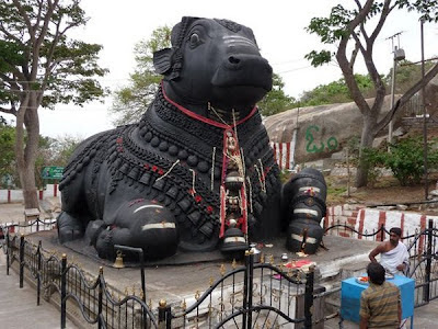 Picture of Nandhi at Chamundeshwari Temple in Chamundi Hills Mysore Karnataka