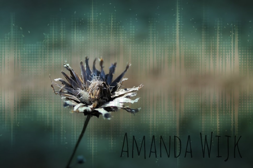 Amanda Wijk