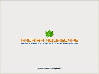 Power-Head-AQUILA-P1200-Pompa-Air-Water-Pump-Peralatan-aquarium-murah-Pachira-aquascape
