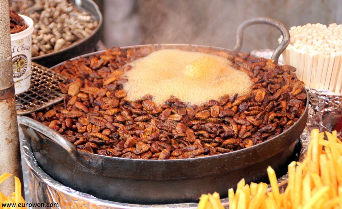 El beondegi coreano son larvas de gusano de seda cocidas