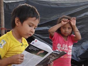Kaiowá Guarani - Acampamento Tkuaju Laranjal