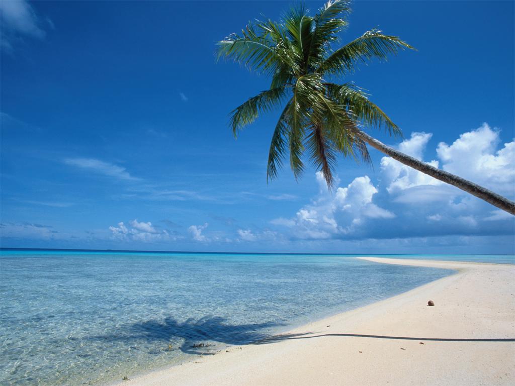 http://2.bp.blogspot.com/-0Gva3Zz9Xtg/T5S_vOpna4I/AAAAAAAAA_w/7hkngP0rNHE/s1600/apr+22+post+Beach-Vacation-Villas-Are-Your-Best-Bet-for-Summer-Beach-Vacations.jpg