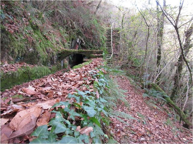 puente, túnel y escaleras