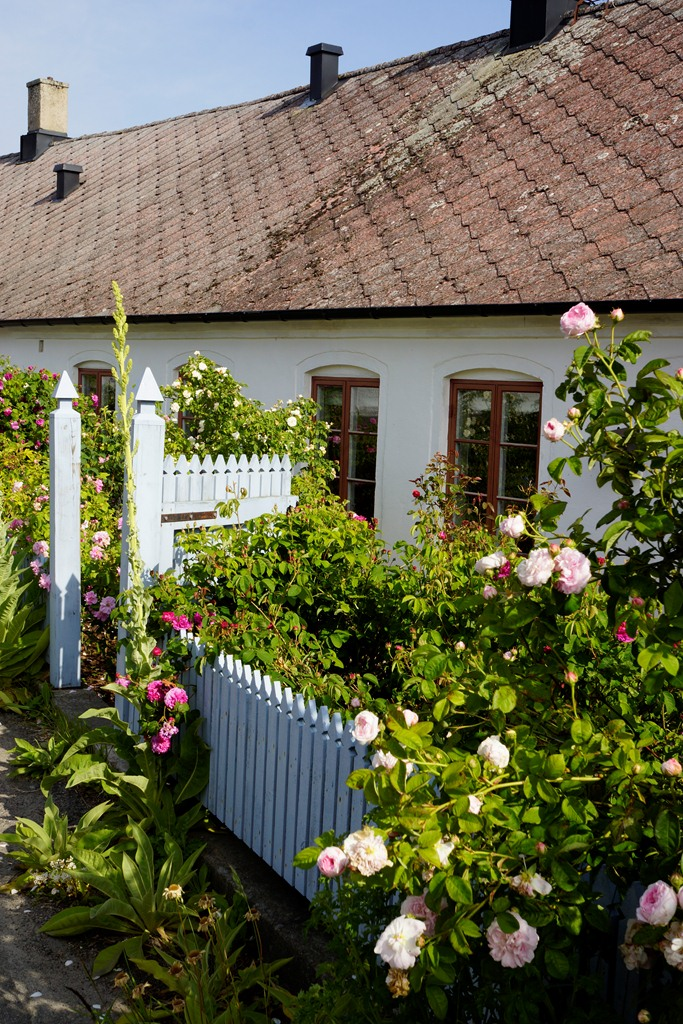 imagens jardim florido:Depósito Santa Mariah: Casa De Praia Com Jardim Florido!