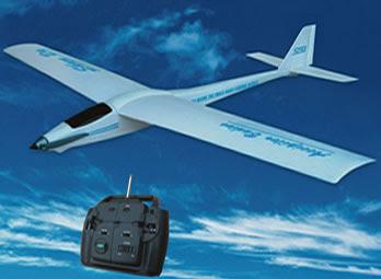 Accipiter Badius electric glider Image