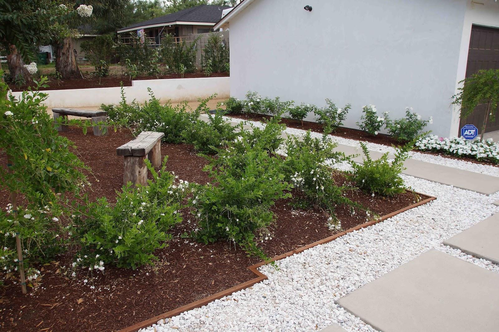 white flowers white gravel. Black Bedroom Furniture Sets. Home Design Ideas