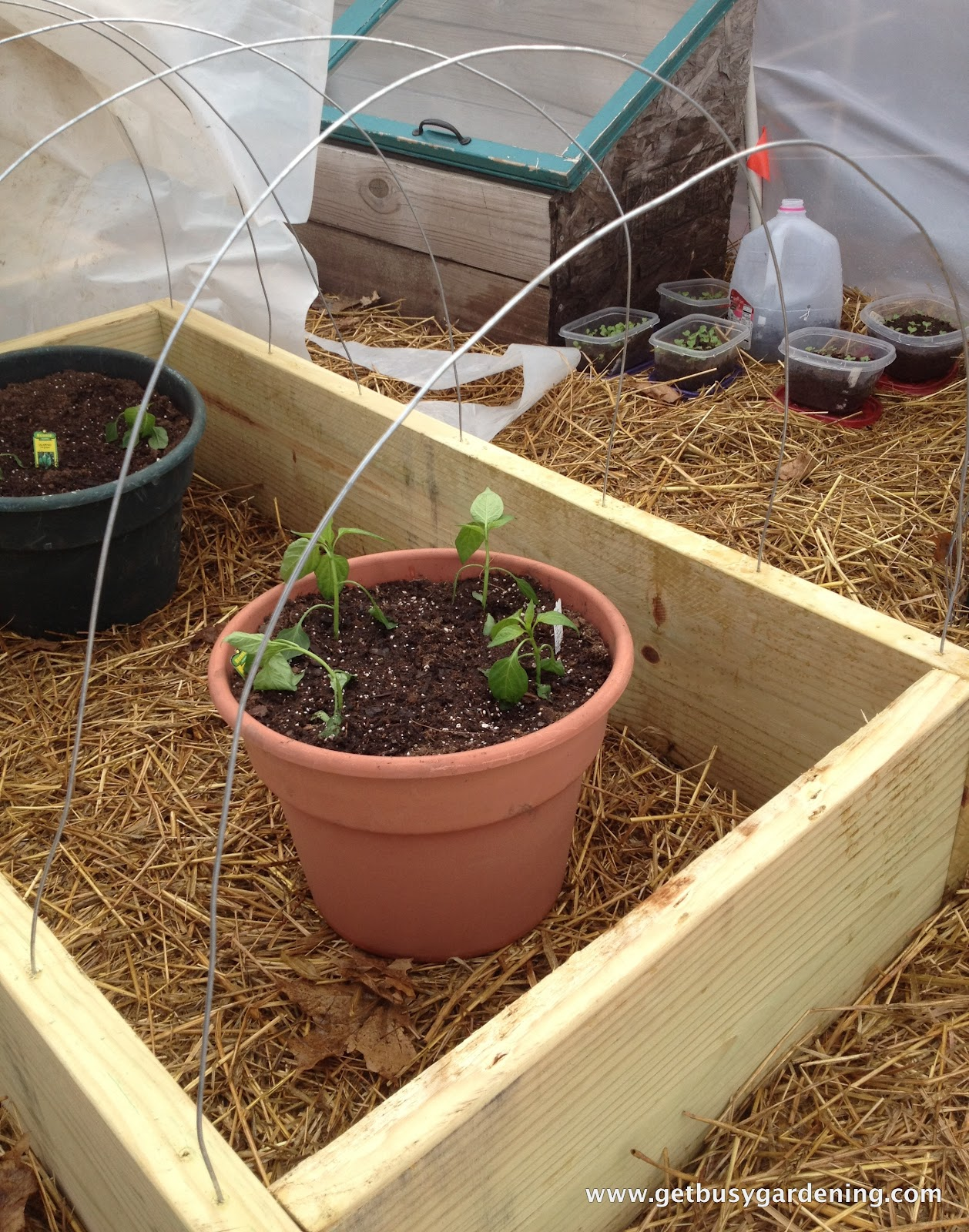 Raised Bed With Cold Frame - Get Busy Gardening