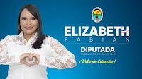 ELIZABETH FABIAN DIPUTADA