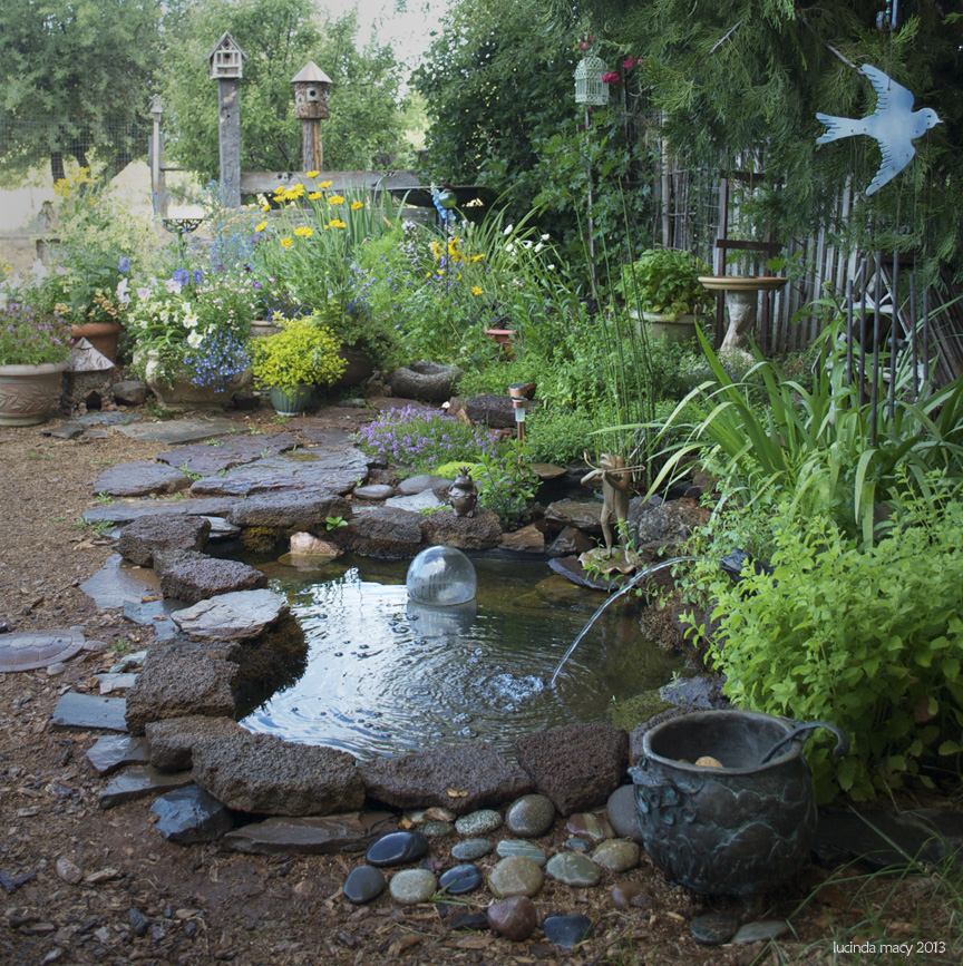 Wild Backyard Garden :  yard to be and many wild toads have come to visit or stay in the ponds