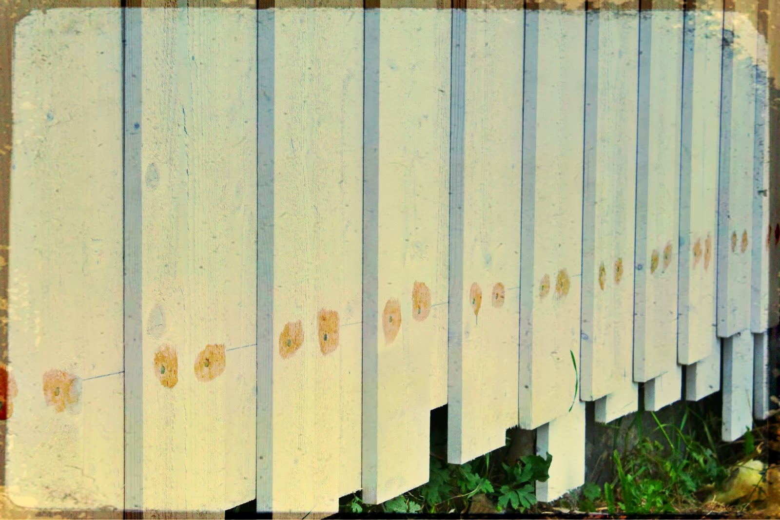 Jotun Maling Priser : Hus i skogen maling