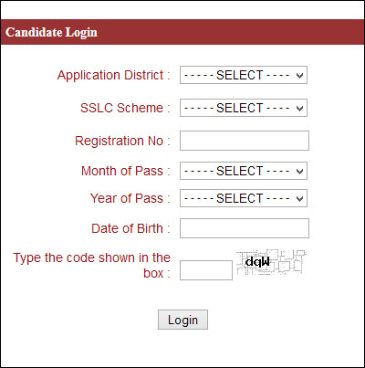 Candidate Application online print