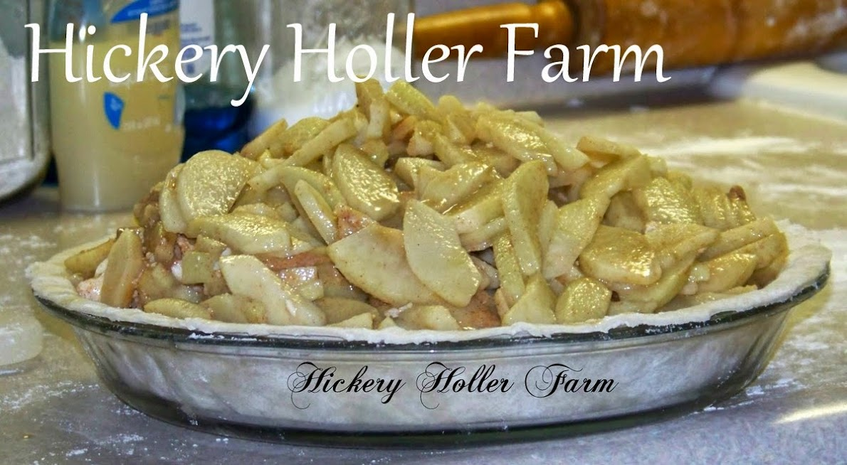 Hickery Holler Farm