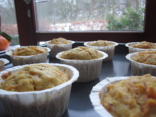 Translating Nutrition: Carrot and Apple Brown Butter Muffins {now with ...