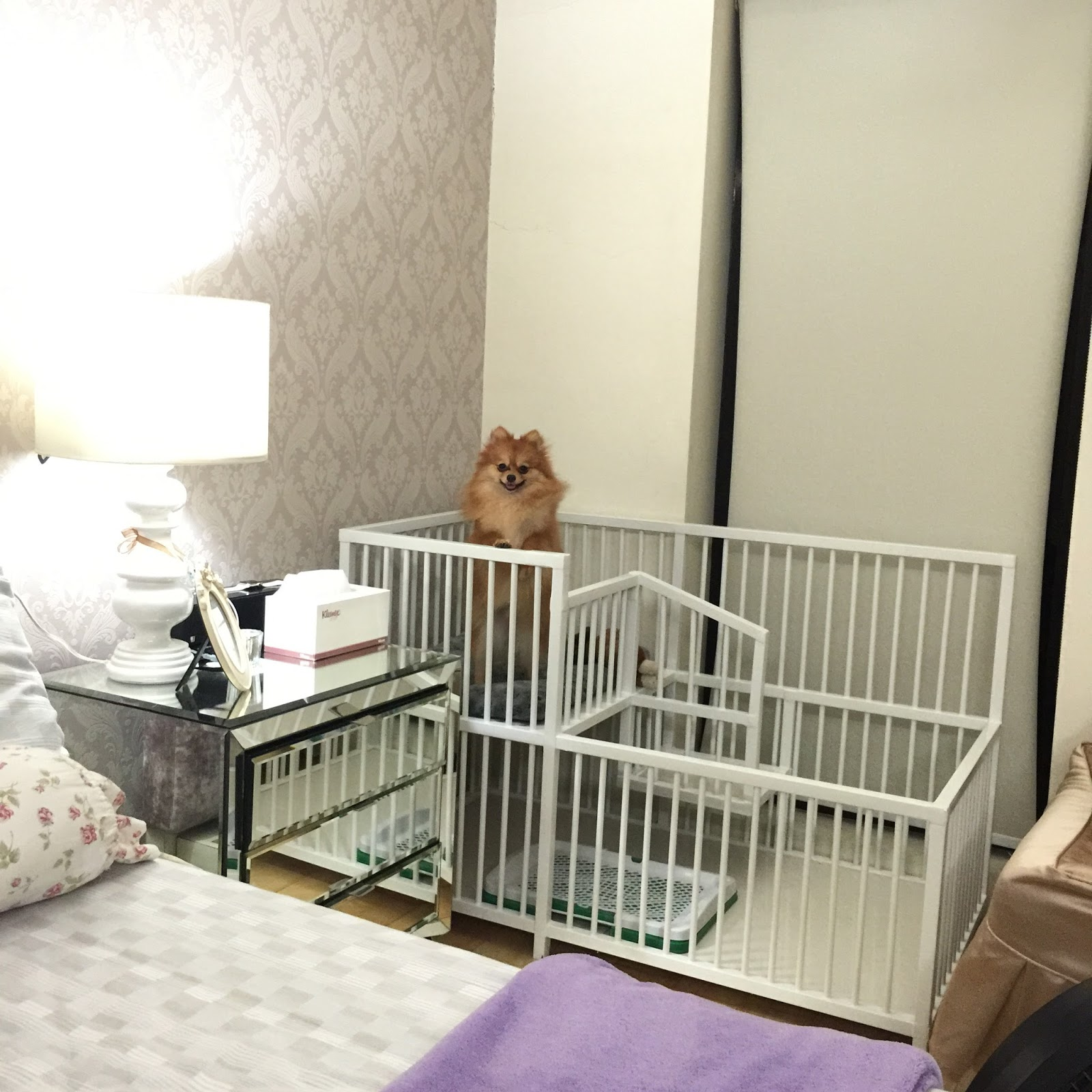 This is one of my dog s crib that i custom designed for her
