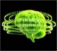 Memórias servem como ferramenta para aprendizado e tomada de decisão