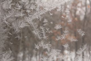 photo of ice crystals on a window